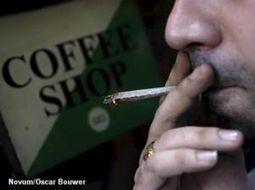 Toeristen blijven welkom in Amsterdamse coffeeshop | Cannabis & CoffeeShopNews | Scoop.it