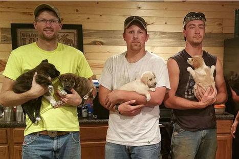 Durante l'addio al celibato salvano 7 cuccioli e la mamma | My Pet's Hero | Scoop.it