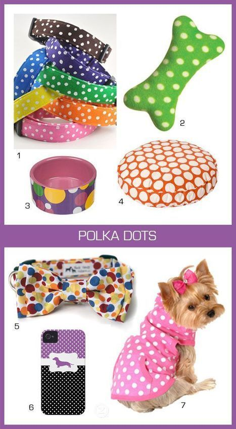 Polka Dots dog products! Nothing says style like some classic polka dots!   Dog Products   Scoop.it