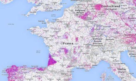 Cette carte du monde interactive dévoile la déforestation massive de notre planète en temps réel   Toulon Alliance Écologiste Indépendante   Scoop.it