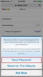 How to set up iCloud Keychain on iPhone | Technology | Scoop.it