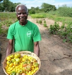 Why organic farming is must- practice for Zambia, world | Zambia Daily Mail | Organic Farming | Scoop.it