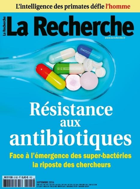 La Recherche - l'actualité des sciences | Département Génie biologique | Scoop.it