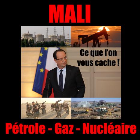 DOSSIER SPECIAL MALI: | DRYPerpignan | Scoop.it