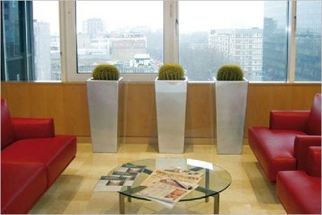 Metal planters,stainless steel planters,aluminium planters,goverhorticulutre | 123Coimbatore | Scoop.it