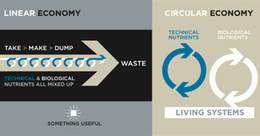 Circular Economy - Ellen MacArthur Foundation | Regenerative Solutions Towards Greater Sustainability | Scoop.it