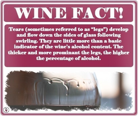 What are Legs in Wine an Indicator of?   Blog Your Wine   I Heard It Through the Grapevine   Scoop.it