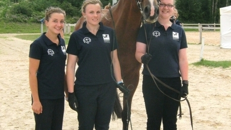 British Young Breeders receive a boost - Horse & Country | Tally Ho'! | Scoop.it