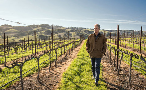 A Savvy Breed of Winemaker Takes Business Sense to the Winery | Vitabella Wine Daily Gossip | Scoop.it