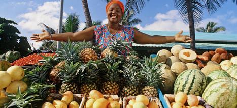 Доминикана — незабываемый рай!   Travel the World   Travel The World   Scoop.it
