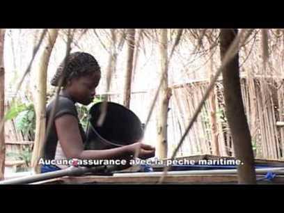 Accaparement des terres au Bénin, quel avenir pour l'agriculture ? | Questions de développement ... | Scoop.it