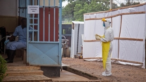Canada's Ebola vaccine: How does it work? - CTV News   Research Capacity-Building in Africa   Scoop.it