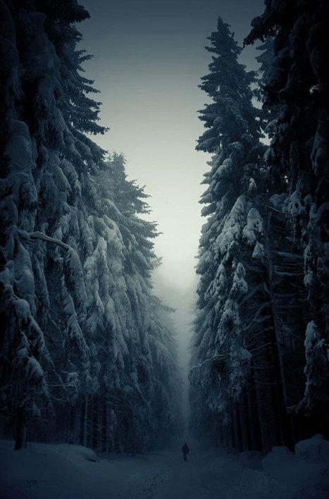 20 merveilleuses photographies de paysages enneigés qui vous donneront goût à l'hiver | regard par la fenêtre de lestoile sur les arts | Scoop.it