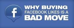 Comprare fan o followers e' inutile e danneggia il mercato: ecco perche' | ToxNetLab's Blog | Scoop.it