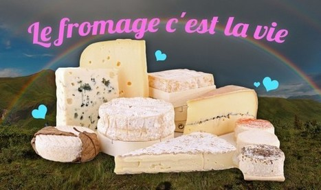 Top 10 des bonnes raisons de se nourrir EXCLUSIVEMENT de fromage | Remue-méninges FLE | Scoop.it