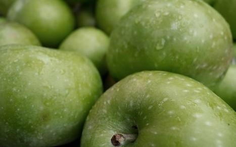 Climate change affecting apples' taste - Telegraph | BIOSCIENCE NEWS | Scoop.it