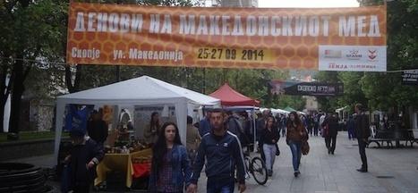 Macédoine : les apiculteurs ont du mal à faire leur miel - Le Courrier des Balkans | Abeilles, intoxications et informations | Scoop.it