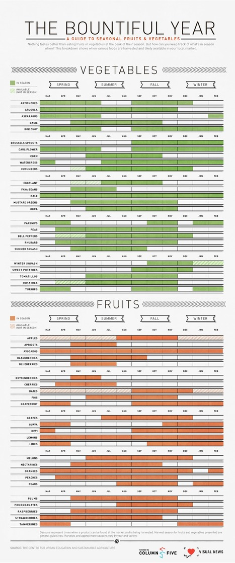 The Bountiful Year: A Visual Guide To Seasonal Produce | HealthSmart | Scoop.it