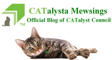FAQs About Microchips and Cats | Pet News | Scoop.it