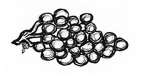 Rencontres des cépages modestes   Le Vin et + encore   Scoop.it