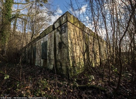Crumbling walls are all that remains of Hitler's command centre   FrenchNewsOnline-World War Memorial   Scoop.it
