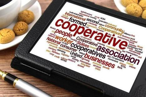 Not Alone: Cooperative and Trade Union Solutions for Freelancers | Peer2Politics | Scoop.it