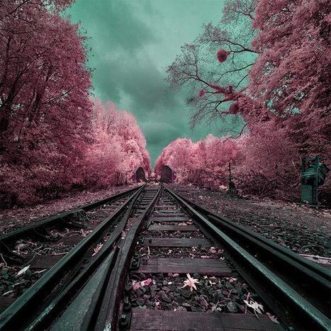 Fantastical infrared photography | Webdesigner Depot | Infrared Photography | Scoop.it