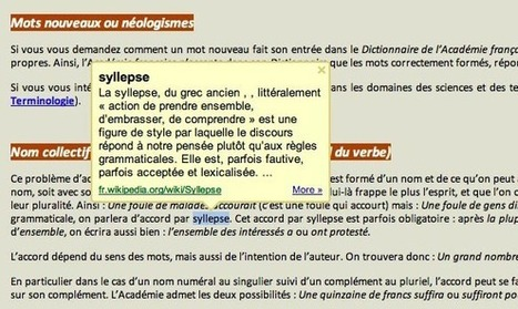 Un dictionnaire dans votre Google Chrome | TICE & FLE | Scoop.it