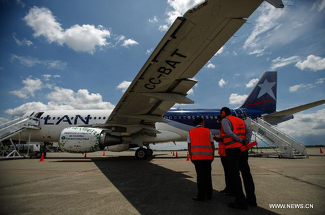 Biofuel-powered commercial flight debuts in Colombia - Xinhua | English.news.cn | World Bio Markets Brazil Report | Scoop.it