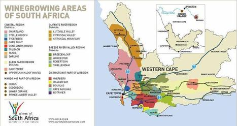 Vin Sud-Africain: Présentation et Sélection! | Vins du Monde | Scoop.it