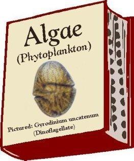 Chesapeake Bay Life > Phytoplankton / Algae | Plankton in the Patuxent | Scoop.it