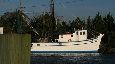 How You Can Support Beaufort's Fishermen! | Travel | Scoop.it