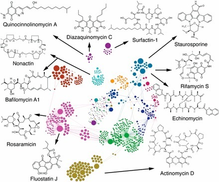 Integration of high-content screening and untargeted metabolomics for comprehensive functional annotation of natural product libraries | Natural Products Chemistry Breaking News | Scoop.it