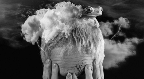 Americká psychóza | Test | Scoop.it