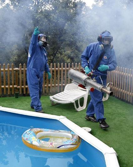 "Dix-sept cas ""importés"" de dengue et de chikungunya sur la Côte d'Azur | Toxique, soyons vigilant ! | Scoop.it"