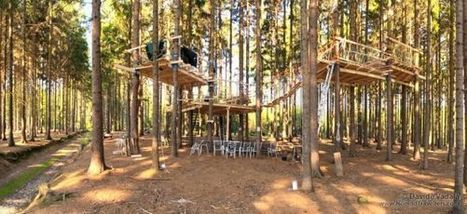Tree climbing and tree house building training in Czech Republic | Backpacking and travelling low cost | Scoop.it