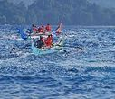 Wonderful Indonesia - Kiluan Bay: Getting Up Close with Dolphins in Lampung | Global Aquaculture News & Events | Scoop.it