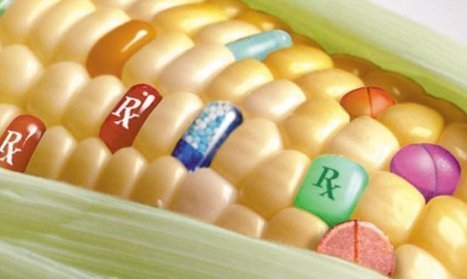 Genetically Modified Organisms Protests | science | Scoop.it