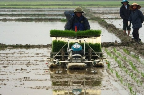 """Mr. Thailand"" supports Vietnamese farmers how to cultivate rice 