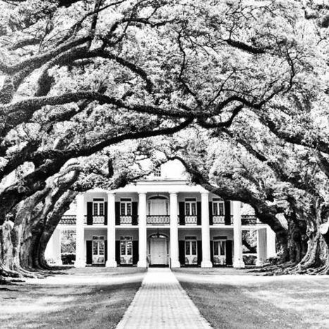 Favorite Places & Spaces | Oak Alley Plantation: Things to see! | Scoop.it