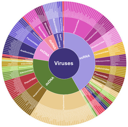 How to Catch a Virus: Targeted Capture for Viral Sequencing | Bioinformatics | Scoop.it