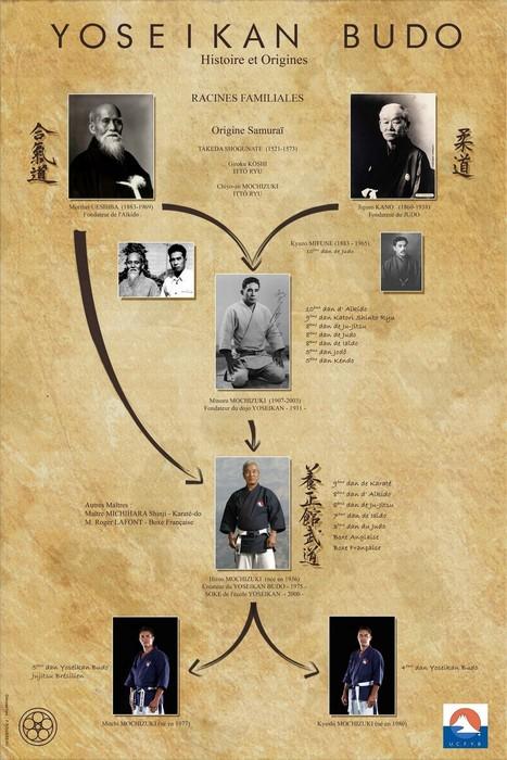 Historique du Yoseikan Budo | Arts martiaux | Scoop.it