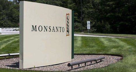 Monsanto accélère le développement de technologies vertes pour l'agriculture | Ecologie, Agro-écologie, Enseignement agricole | Scoop.it