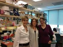 News Release: World Cancer Day Research Highlight - Breast Cancer Breakthrough in BC | Breast Cancer News | Scoop.it