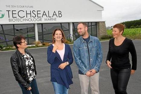 TechSeaLab. Des algues et beaucoup d'innovation | Les algues en Bretagne | Scoop.it