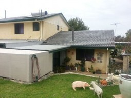 Roof Repairs Perth   Business services   Scoop.it