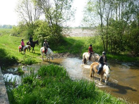 Sion-les-Mines Randonnée équestre départementale le 13 septembre - L'Eclaireur de Châteaubriant | Actu Equine en Pays de la Loire | Scoop.it