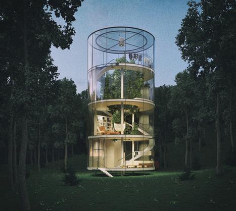 En images : une étonnante maison de verre à bâtir autour d'un arbre | D'Dline 2020, vecteur du bâtiment durable | Scoop.it