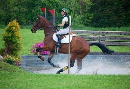 Lila Gendal: How To Compartmentalize Our Worlds | From the Equine Blogosphere | Scoop.it