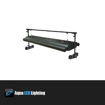 led lights aquarium | LED LIGHTS AQUARIUM | Scoop.it
